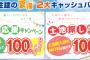 2016夏2大キャンペーン!(8/20~31限定!)キャッシュバック&豪華ご成約プレゼント♪